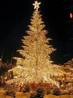 Christmas in Tivoli Gardens, Copenhagen, Denmark | Christmas Season