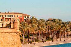 Mallorca im Winter Die Kathedrale
