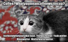 mmmmwatter