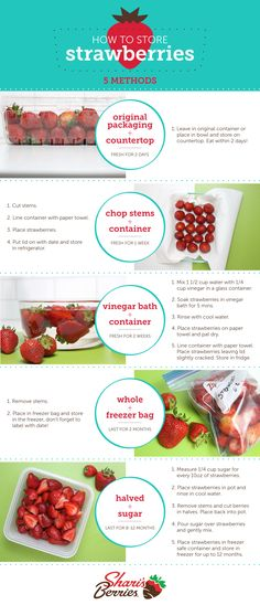 The best way to have fresh and delicious strawberries is by storing them properly. Our how-to guide makes it quick and easy to keep your strawberries fresh.