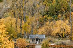 Arrowtown in Autumn is spectacular! and perfect for couple photoshoots. By Dan Childs at 222 Photographic Studios, Queenstown, New Zealand.