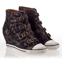 737958e1caee Ash Eagle Womens Wedge Sneaker Cookie Suede 340003 (296)