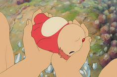 Ponyo (gif) awwww :) I love this movie sooooo much!! <3