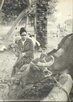 Oum Kalthoum visiting her native village of Tamay Al Zahareya