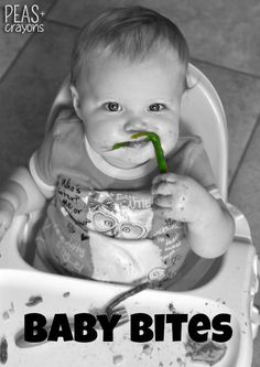 Baby Bites: Adventures in Baby Led Weaning!