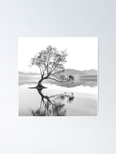 """""""Black and White Landscape Wanaka Tree New Zealand"""" Poster by ind3finite 