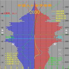 中国人口金字塔 - tanxinwhu的专栏 - 博客频道 - CSDN.NET