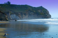 Avila Beach. This is where I'm going today!