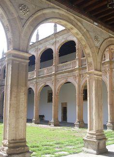 Palacio de Fonseca college (Salamanca, Spain)