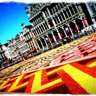 Belgium  - Brussels Flower Carpet, August in even years