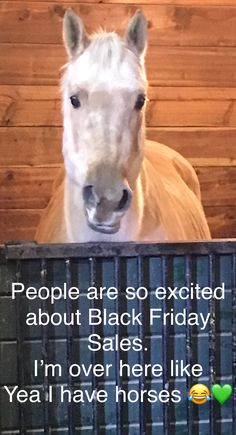 Why not make some cash and spend some cash this Black Friday! This is an affiliate link Funny Horse Memes, Funny Horses, Horse Humor, Funny Animals, Western Riding, Southern Sayings, Western Pleasure, All About Horses, Horse Quotes