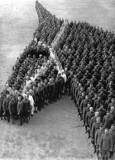 cruello:  650 Officers and Enlisted Men of the Auxiliary Remount Depot No 326, Camp Cody, Deming NM - 1915