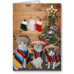 Funny Cats Feliz Navidad. Cute Christmas Card