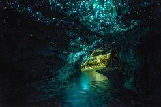 """Uma das fantásticas cavernas de Waitomo, que fica em Nova Zelândia.  Esses brihos na imagem, são conhecidos como """"glow worms"""", que são basicamente larvas que nascem e tem uma bioluminescência, como vaga-lumes por exemplo. O objetivo das luzes é atrair mosquitos e outros insetos para suas teias de seda e se alimentarem."""