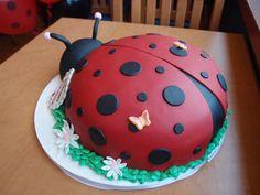 Ladybug birthday cake.  Wing profile.