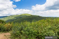 Hike this double-summit, ultra-scenic five mile loop on the Art Loeb and Ivestor Gap trails, summiting Black Balsam Knob and Tennent Mountain.
