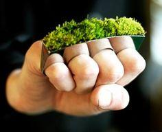 living jewelry via organic green roots