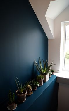 makeover landing, stairway, entry jungle urban plants color wall green blue renovation house succe-sur-erdre the beautiful architecture Stéphanie Durand Nantes Paint Colors For Living Room, Paint Colors For Home, Bedroom Colors, Wall Colors, House Colors, Interior Plants, Interior Design, Ornamental Plants, Room Setup