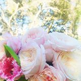 do you ever have those (rare) mondays where you wake up feeling like you're just going to conquer the week? that's how today feels for us, and we're embracing it with open arms ☕️ now if only we had this bouquet of gorgeous peonies + garden roses from last month's @lclaurenconrad shoot…