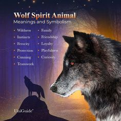 Wolf Symbolism, Animal Symbolism, Animal Spirit Guides, Wolf Spirit Animal, Wolf Meaning, Lone Wolf Quotes, Wolf People, Animal Meanings, Native American Wolf