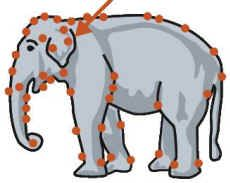Bullhooks: Used On Elephants: An All Creatures Animal Rights Article
