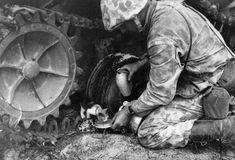 Marine combat cameraman Norman Hatch assists a small kitten he found underneath a Japanese tank on Tarawa Atoll.