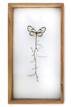 """""""Golden root butterfly"""". This butterfly was missing its body and I added the plant root to recreate the butterfly's torso. <br> The root symbolizes an umbilical cord to the earth. (w:14 h:25 d:5.5 cm)"""