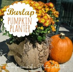 painted pumpkins ideas | Great Ideas - 26 Pumpkin Decorating Projects! -- Tatertots and Jello