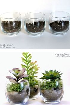 We love these cute succulent cups to decorate your living room, bedroom and entryway on a budget. Cheap dollar store succulent upgrade DIY. Wreath Stand, Old Baskets, Thanksgiving Baby, Wood Cake, Succulent Wreath, Vintage Office, Faux Succulents, Painted Mason Jars, Cork Crafts