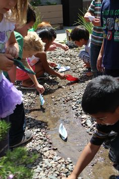 Becoming a Nature Explore® Classroom | National Association for the Education of Young Children | NAEYC TYC | Teaching Young Children Magazi...