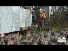Joel Salatin is one guy who's got the right idea.  This is how it should happen everywhere.