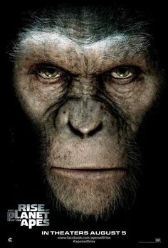 Rise of the Planet of the Apes (International) 27x40 Movie Poster (2011)