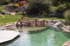 Natural Swimming Ponds, Swimming Pools Backyard, Water Features, Garden, Outdoor Decor, Nature, Bathrooms, Pai, Natural Swimming Pools