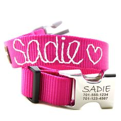 Metal Engraved Personalized Webbing Dog Collar with embroidered name -- Must have!
