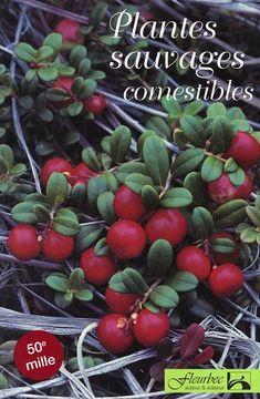 Plantes sauvages comestibles (de Fleurbec)