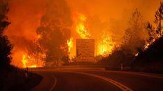 ¡Cronología! Incendio en Portugal, uno de los más trágicos del mundo (+fotos)