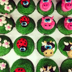 Pigs cows ladybugs and flowers all piped with buttercream icing!