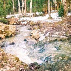 """Kappale luontoa ∆ Luontoblogi sanoo Instagramissa: """"#puro #stream #kevät #spring #luontokuvaus #naturephotography #kuohu #whitewater"""" Spring, Water, Outdoor, Instagram, Gripe Water, Outdoors, Outdoor Games, The Great Outdoors"""