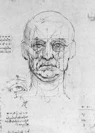 Znalezione obrazy dla zapytania face proportions drawing