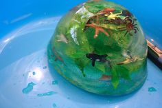 http://mamapapabubba.com/2014/01/08/frozen-ocean-animal-rescue-salt-water-ice-play/
