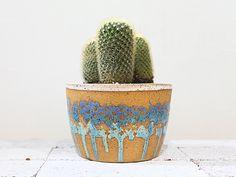 Cactus Planter - Alexandra Corrin - AlexandraCorrinCeramics.com