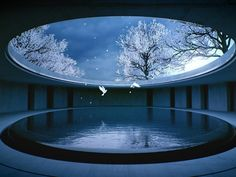 Tadao Ando y El Budismo Zen - Wall Street International Tadao Ando, Water Architecture, Classical Architecture, Architecture Design, Zen, Kengo Kuma, Carlo Scarpa, Circular Buildings, John Pawson