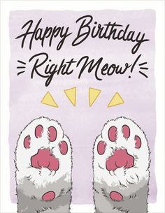 Seltzer goods cat lady pennant grin pinterest room seltzer goods happy birthday right meow greeting cards super cute and ready to go at m4hsunfo