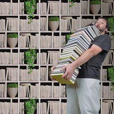 Papier peint vinyle sur intissé Bibliothèque lierre, écru, larg. 0.53 m