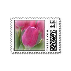 Autumn Pink Tulips Postage