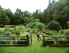 I'd love to do a huge garden like this with the whole family. Love the fence and how neat and tidy it looks.
