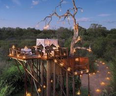 #Romantic #Dinner at #Lion_Sands #Chalkley_Tree_House at #Kruger_National_Park in #South_Africa http://directrooms.com/south-africa/hotels/index.htm