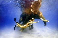 Andaman and Nicobar Islands, India, April 2008. snorkeling with Rajan the elephant that takes a daily swim in the sea.