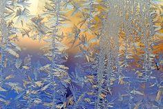 あなたの知らない美しい氷の表情 21選@Flickr:DDN JAPAN