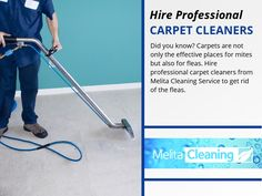 Hire Professional Carpet Cleaners - Did you know? Carpets are not only the effective places for mites but also for fleas. Hire professional carpet cleaners from Melita Cleaning Service to get rid of the fleas. Professional Cleaners, Carpet Cleaners, Cleaning Service, Fleas, Carpets, Did You Know, Work Hard, Effort, Rid